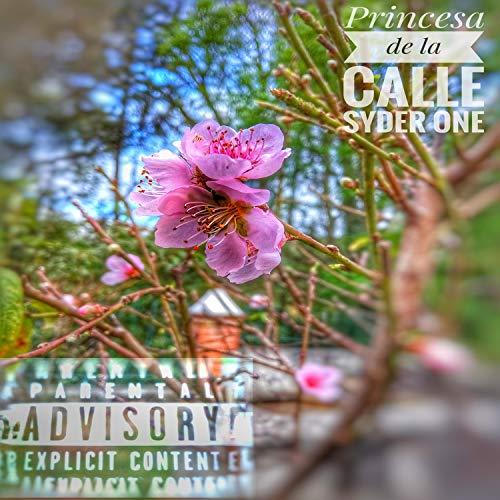Princesa de la Calle [Explicit]