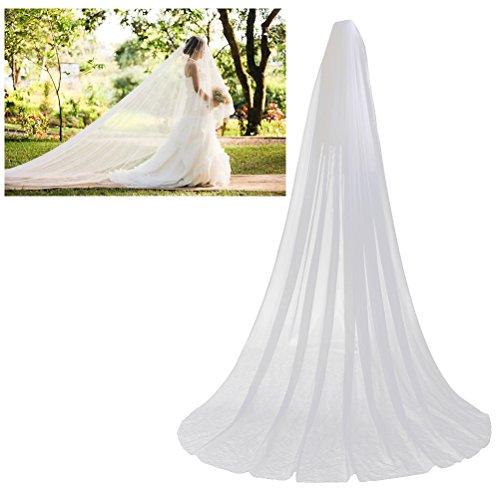 Frcolor Velos nupciales de la boda, Velos de novia largos de 3M Velo nupcial de tul con peine (Blanco)