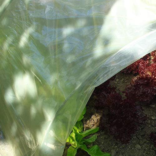 Tenax Sun Film, 3 x 10 m, Amarillo, película Protectora Impermeable de plástico para Cubrir túneles y persianas, protección de Cultivos huertos