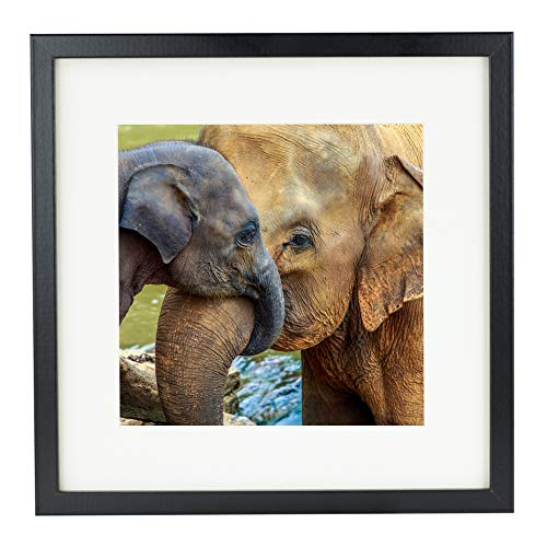 BD ART 28 x 28 cm Marco de Fotos Cuadrado con Paspartu 20 x 20 cm, Negro