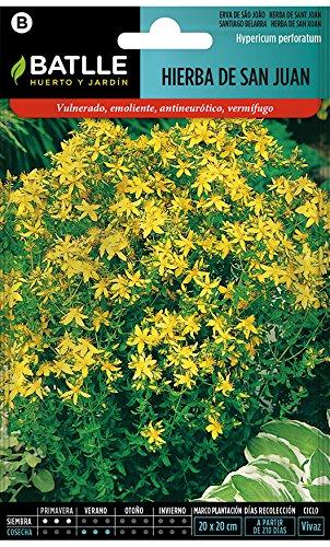 Semillas Aromáticas - Hierba de San Juan - Batlle
